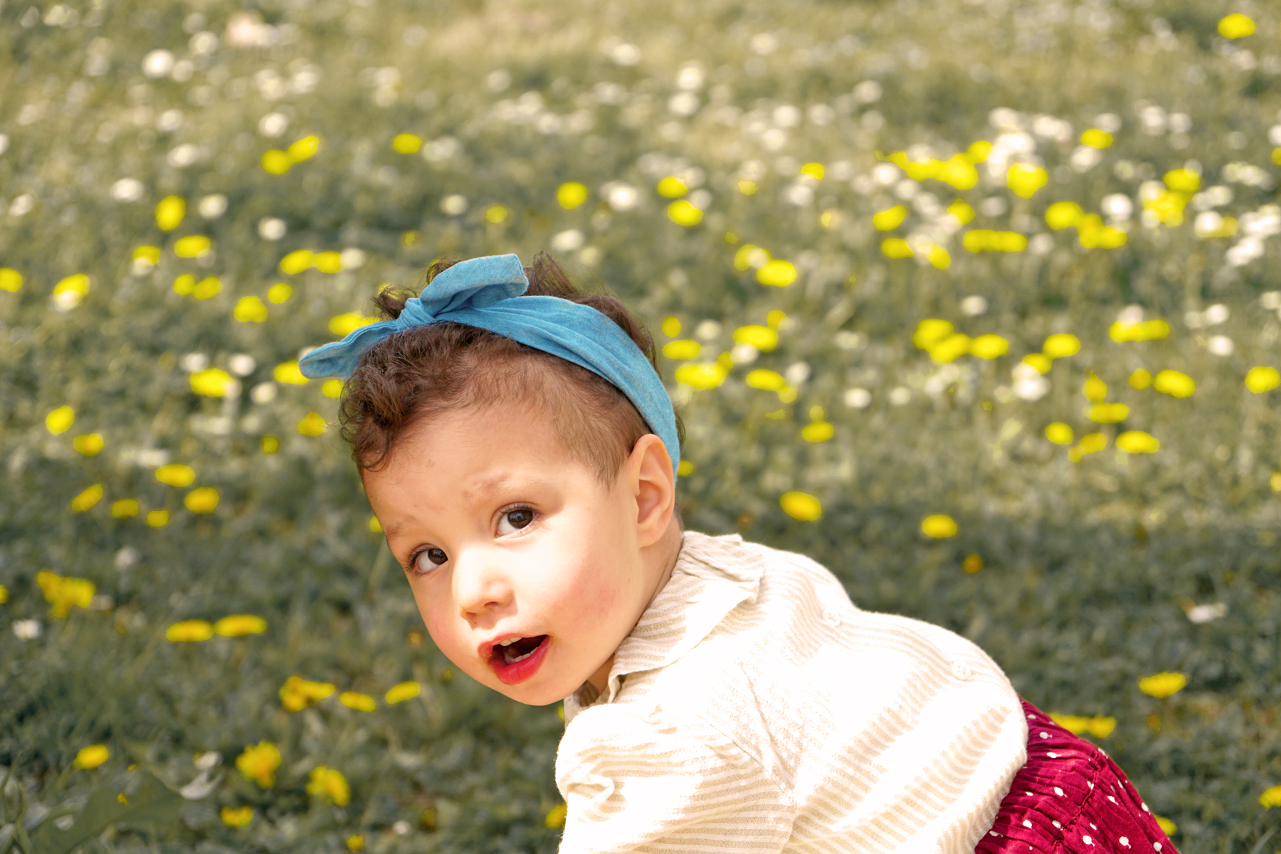 Petite fille cueille des fleurs