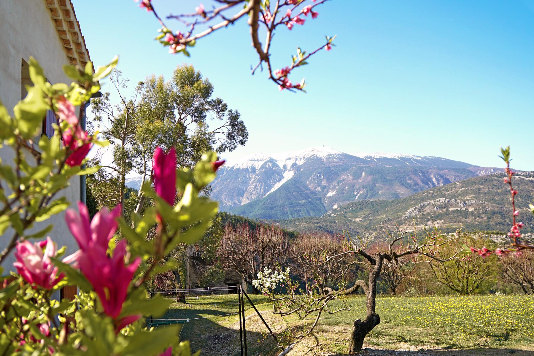 Vue sur le Mont Ventoux, Drôme provençale