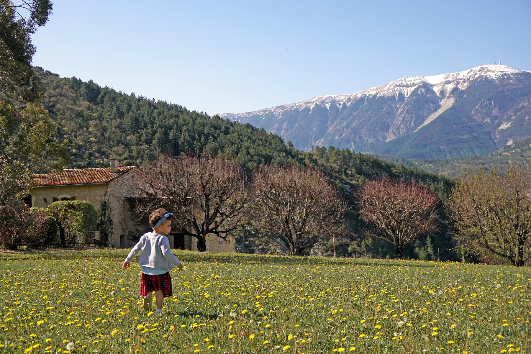 Petite fille, vue sur le Mont Ventoux, Drôme provençale