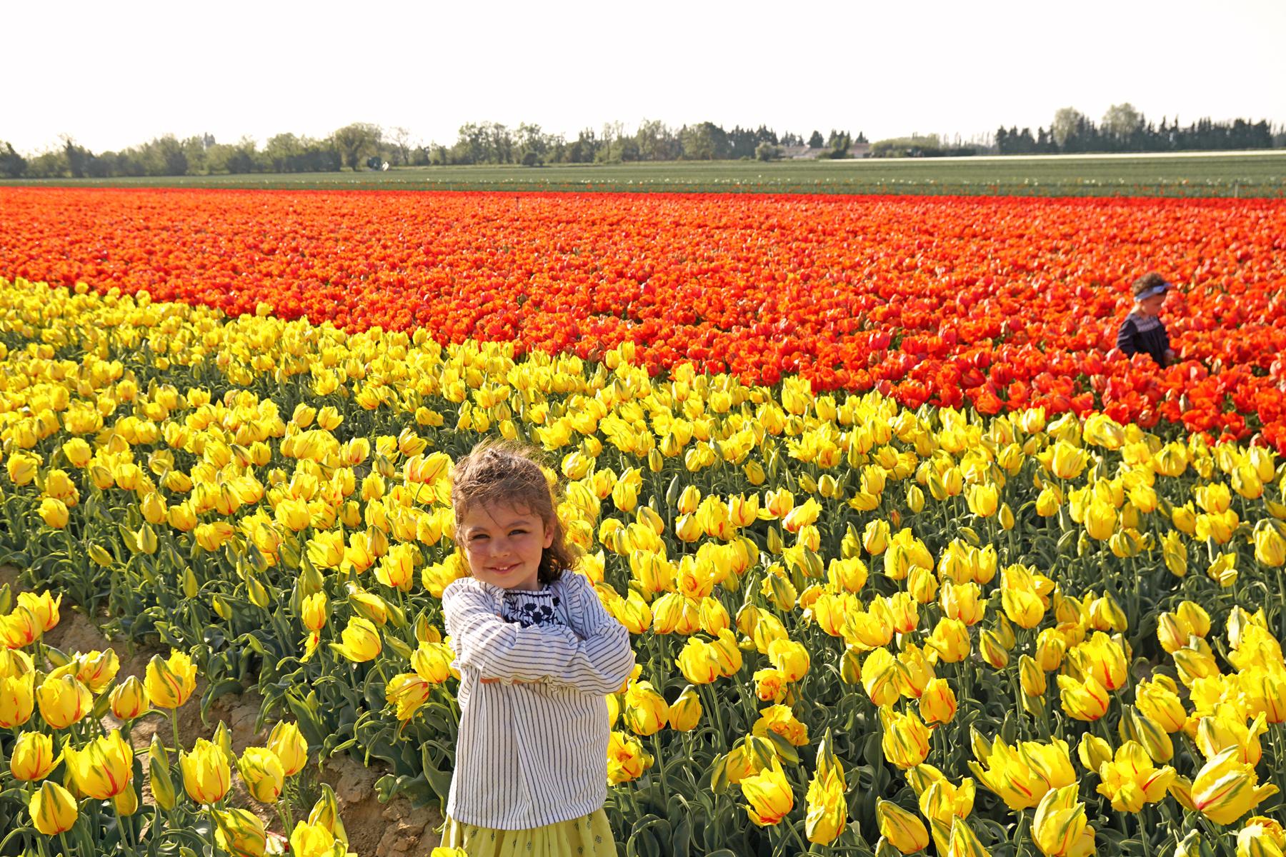 Petites filles dans un champs de tulipes