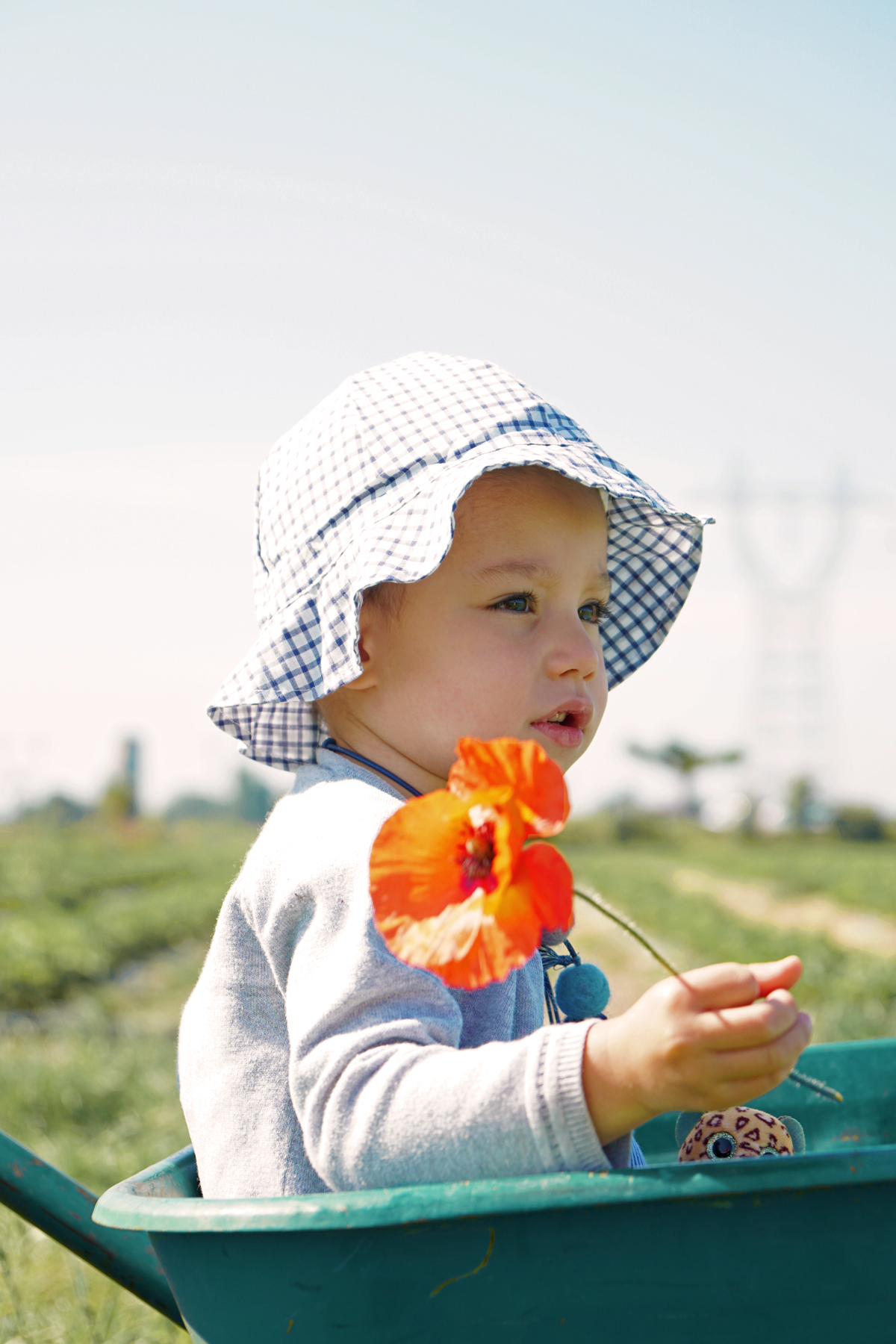 Petite fille et sa fleur à Fraisochamps, Thil