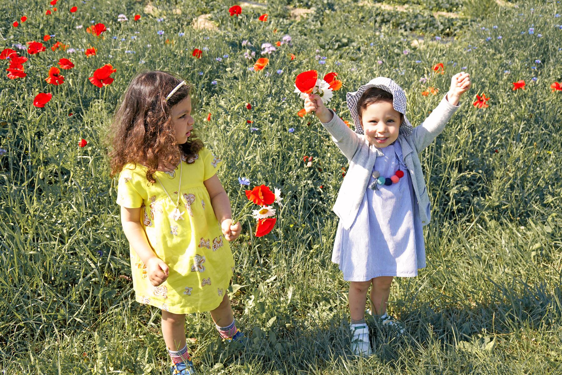 Petites filles dans un champs de fleurs à Fraisochamps, Thil