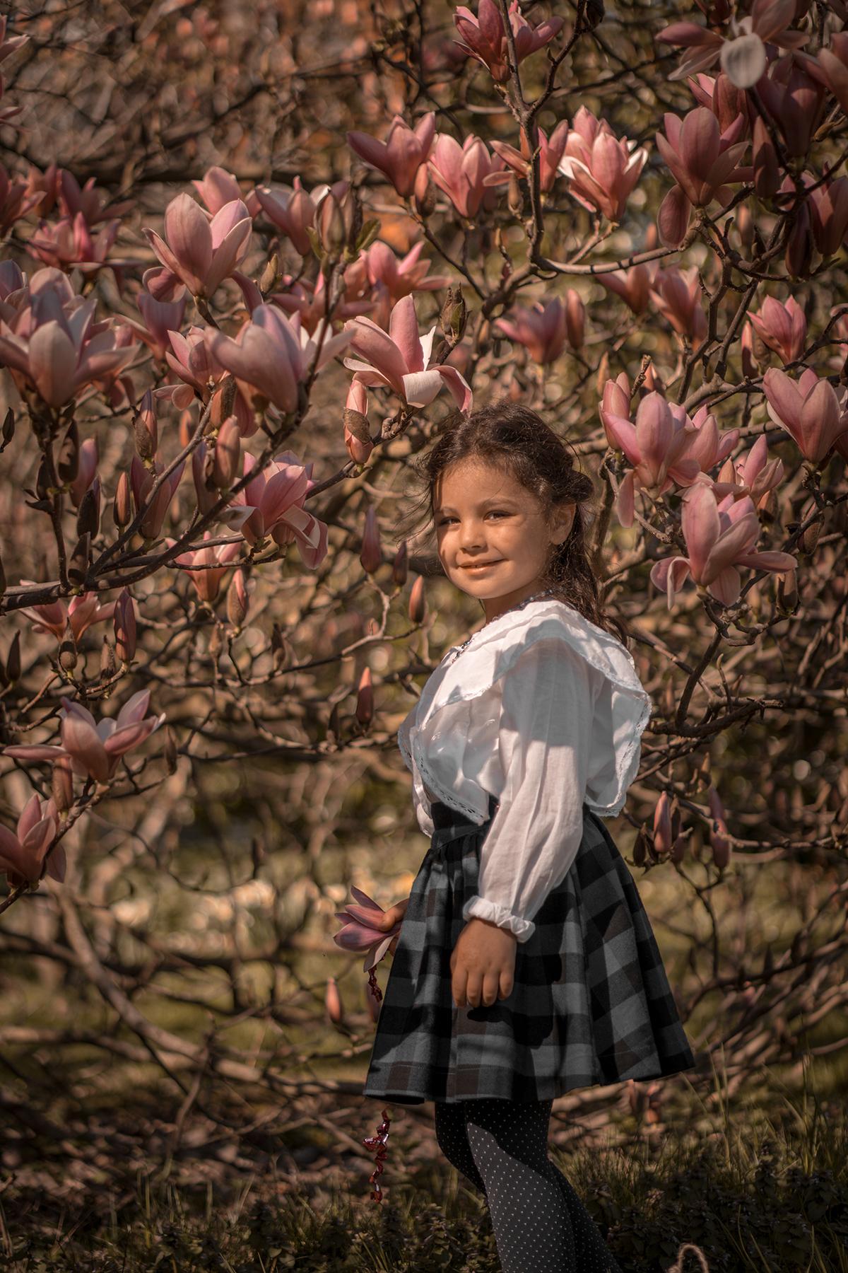 Magnolias en fleurs