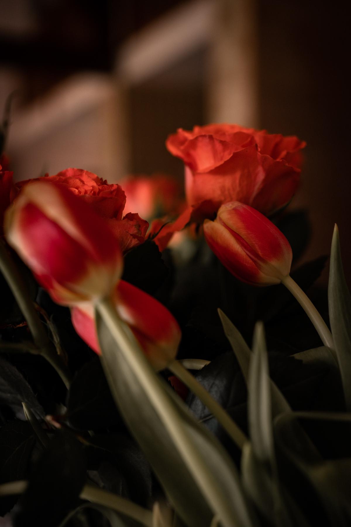 Anniversaire confiné, Coronavirus, bouquet