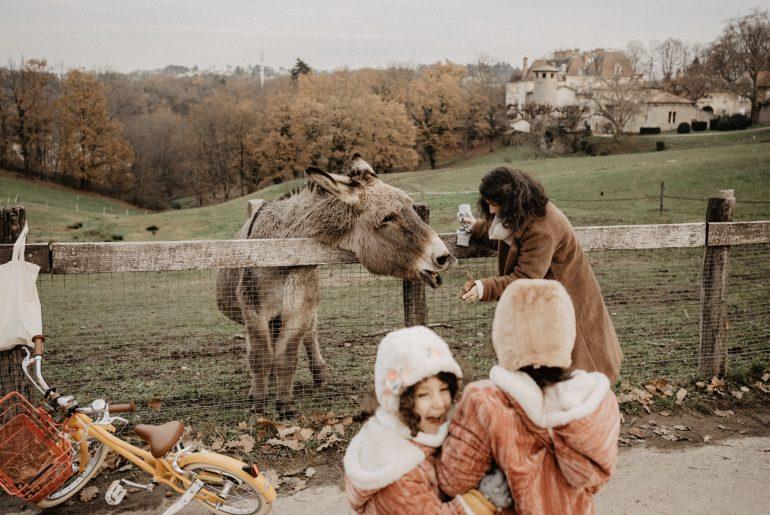 Fou rire d'une famille. au parc de Lacroix Laval, rencontre avec un âne.